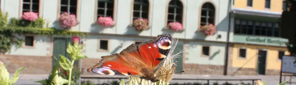 Gasthof Hertigswalde